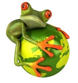 Pour mieux comprendre et définir l'impact réel du courrier sur l'environnement