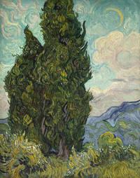 Vincent van Gogh - Entre terre et ciel: les paysages