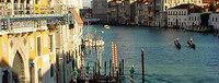 Biennale de Venise: 53e exposition internationale d'art contemporain