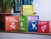 Les Objectifs de Développement Durable, objectifs prioritaires et intégrés aux démarches RSE des entreprises
