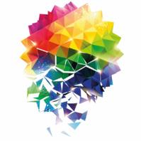 Diversité et inclusion 2019