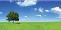 Valeurs technologiques : séparer le bon grain de l'ivraie
