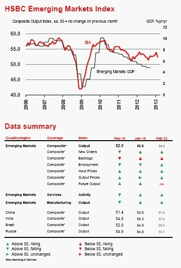 HSBC Emerging Markets Index (February 2013)