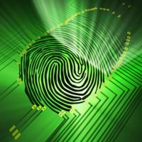 France | Identités numériques : véritable enjeu pour les entreprises
