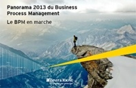 Panorama 2013 du Business Process Management