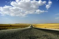 France | Les obligations de transparence en matière sociale et environnementale pour les entreprises rentrent en vigueur