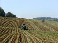 Coface place le secteur agroalimentaire français sous surveillance négative