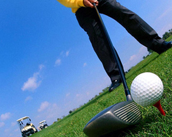 Annual Review of Golf Coaching de 2008