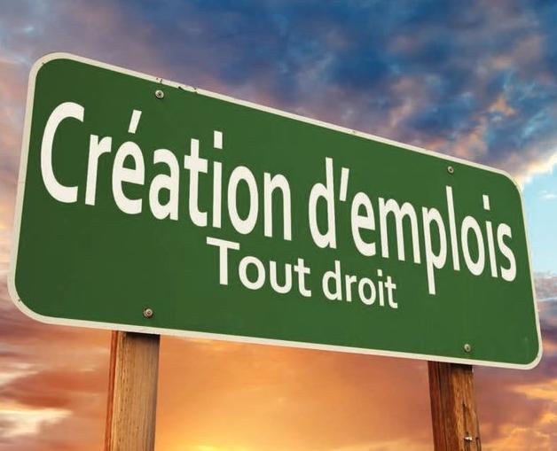 France : stratégies d'emploi et de compétences