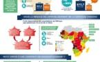 Chine-Afrique : le mariage de raison va-t-il durer ?